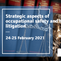 Strategic aspects of occupational safety and health litigation